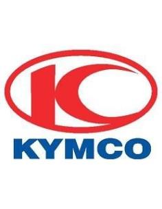 STATORE KYMCO AGILITY 125 150 R16 CAMPO MAGNETICO GENERATORE DI CORRENTE ORIGINALE