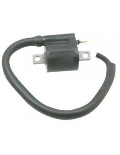 Ignition Coil Scooter 50 125 150 250 Aprilia Benelli Malaguti Mbk Yamaha best price