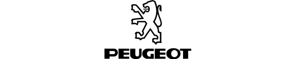 Originální náhradní díly a příslušenství pro obchodní a Scooter Scooter světla Peugeot Peugeot tělo motoru
